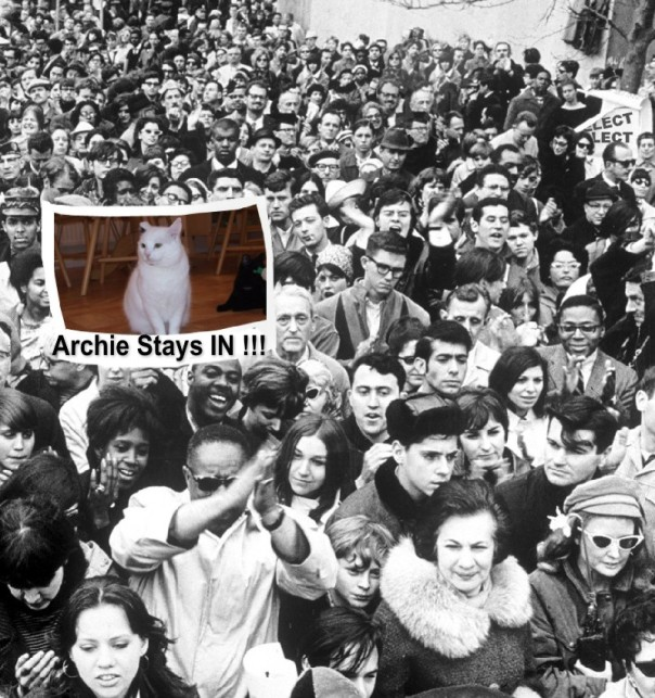 ArchieProtest1-1