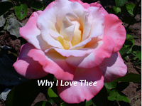 why-i-love-thee-award