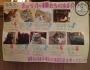 Tokyo Cat CafeCats