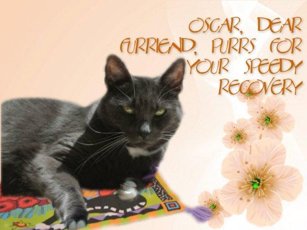 get well oscar