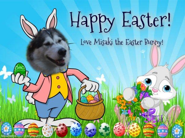 Misaki the Easter bunny-2