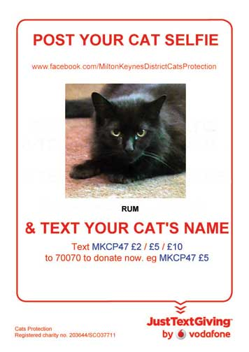 MK Cats Protection selfie poster