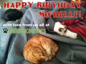 happy-birthday-michelle