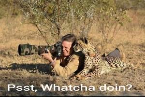 funny-animal-photos-captions-26