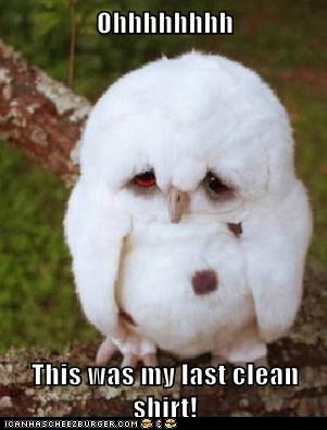 funny-animal-captions-animal-capshunz-i-always-spill-on-myself-when-i-wear-white